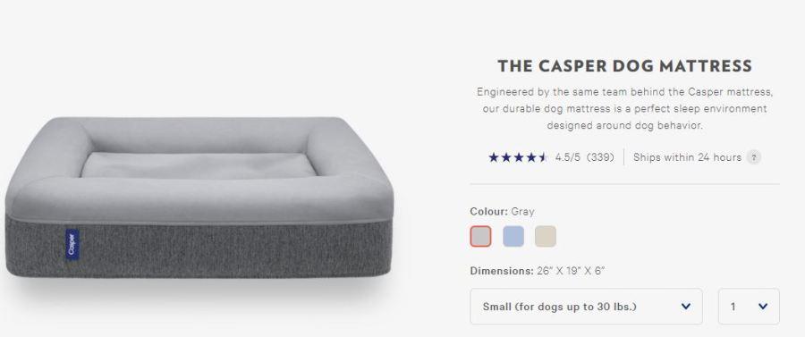 Casper dog